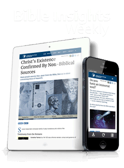 Bible Insights Weekly